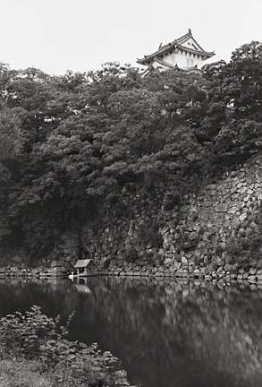 Himeji and Swan