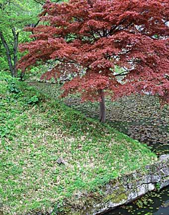 Tohoku Castle