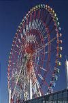 Aomi Big Wheel