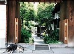 Temple Dog