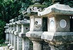 Stone Lanterns at Kasuga Grand Shrine